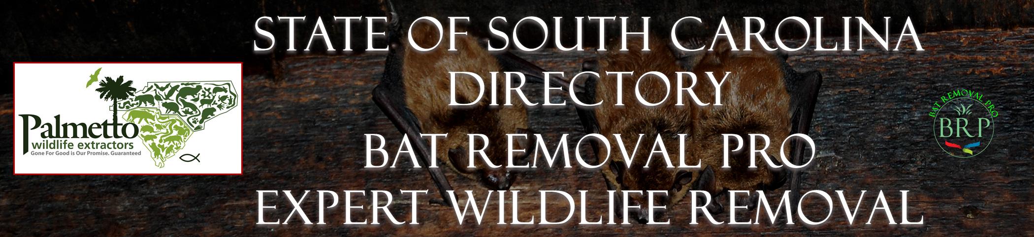 south carolina header image at bat removal pro