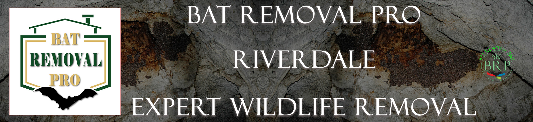 Riverdale-bat-removal-at-bat-removal-pro-header-image