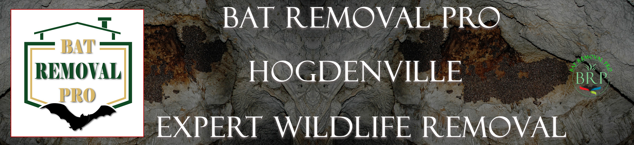 HOGDENVILLE-bat-removal-at-bat-removal-pro-header-image