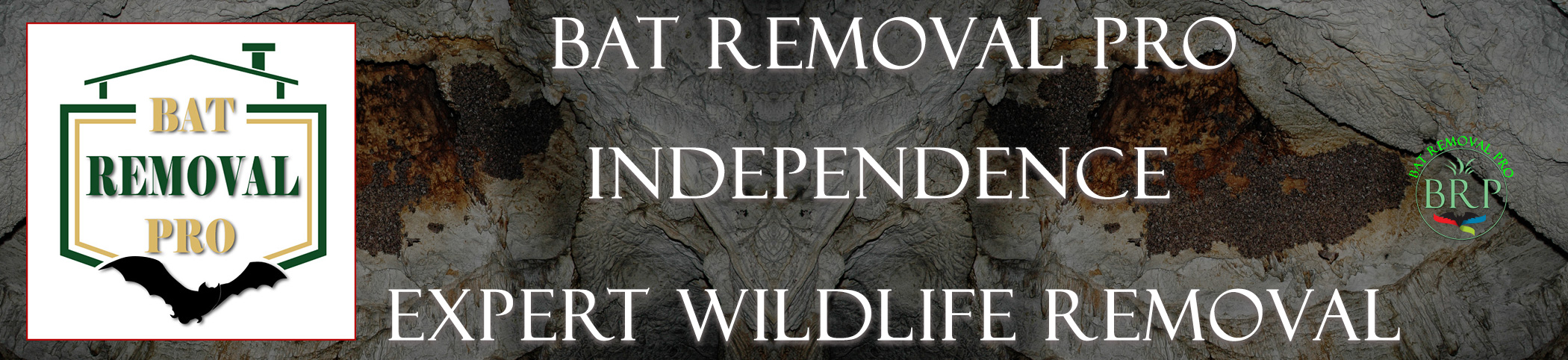 independence-bat-removal-at-bat-removal-pro-header-image