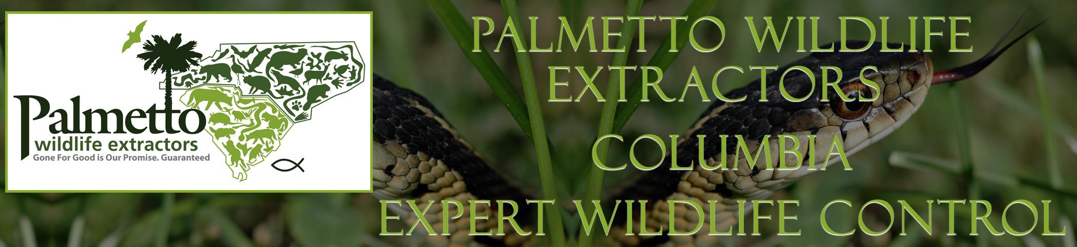 Palmetto Wildlife Extractors columbia south carolina header image