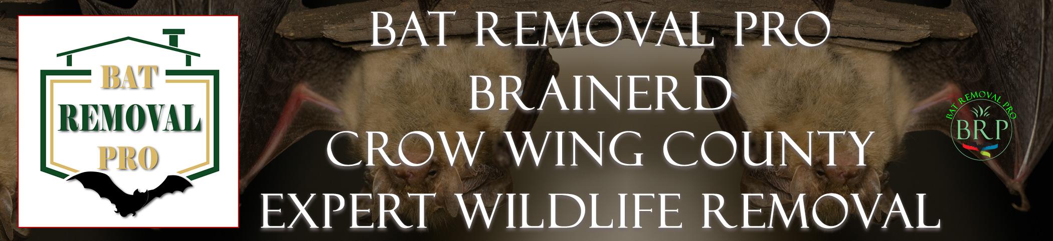 Brainerd Minnesota Logo at Bat Removal Pro