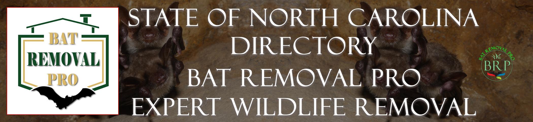 NORTH-CAROLINA-bat-removal-at-bat-removal-pro-header-image