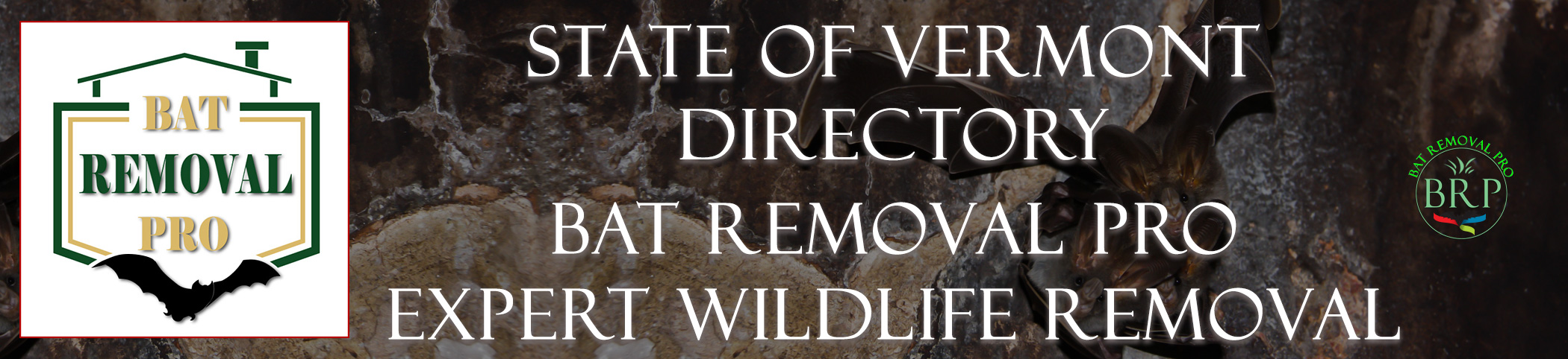 VERMONT HEADER IMAGE AT BAT REMOVAL PRO