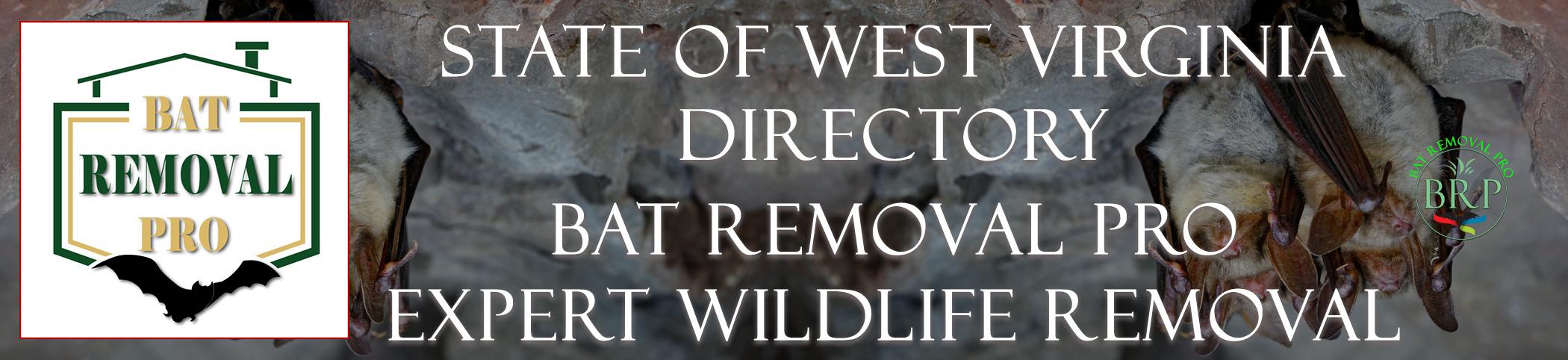 WEST-VIRGINIA-bat-removal-at-bat-removal-pro-header-image