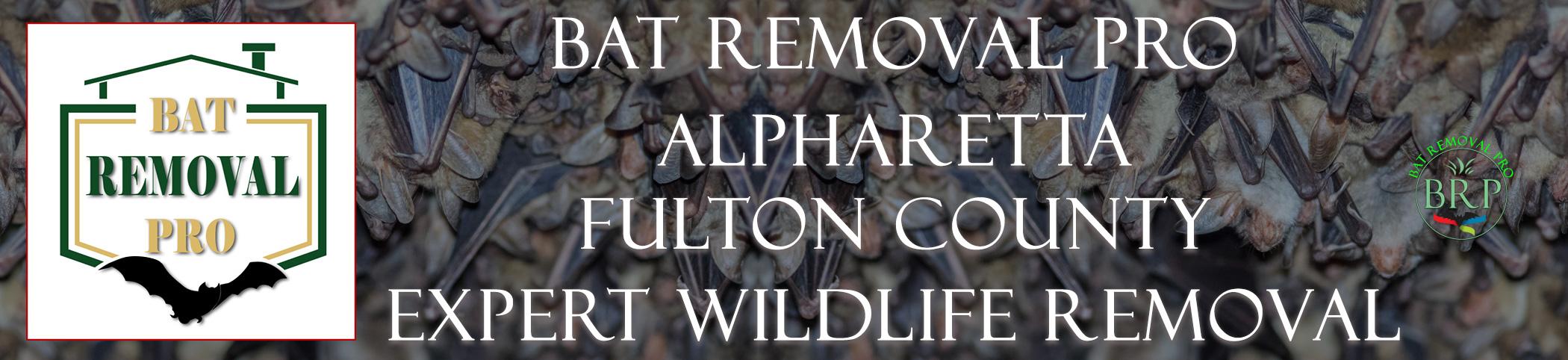 ALPHARETTA-FULTON-COUNTY-georgia-bat-removal-at-bat-removal-pro