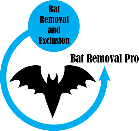 bat removal pro circle with bat badge