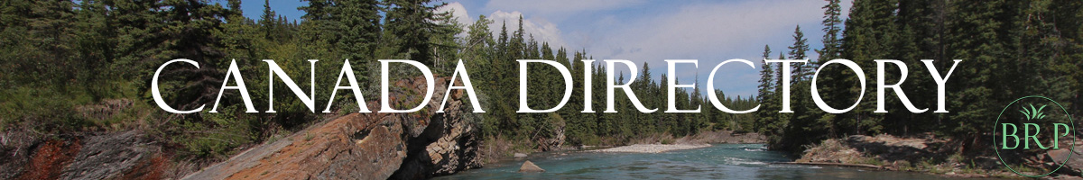 Bat Removal Pro - Directory of Wildlife Professionals - Canada Page Header Image