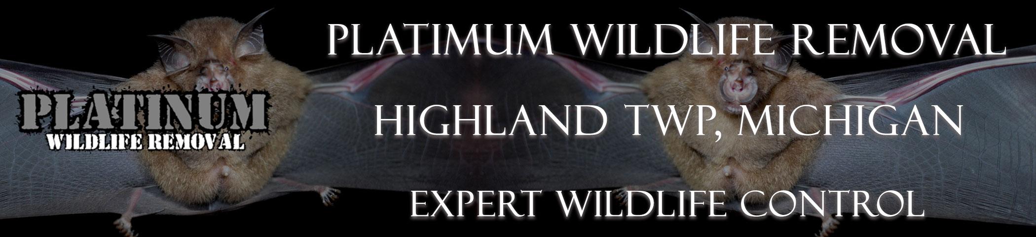 Highland-TWP-Platinum-Wildlife-Removal-michgan