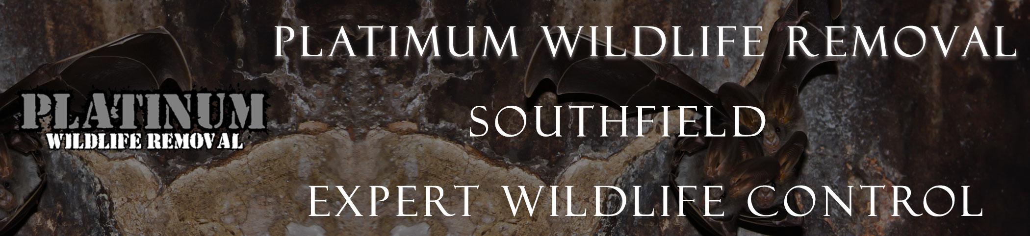southfield michigan header image at bat removal pro