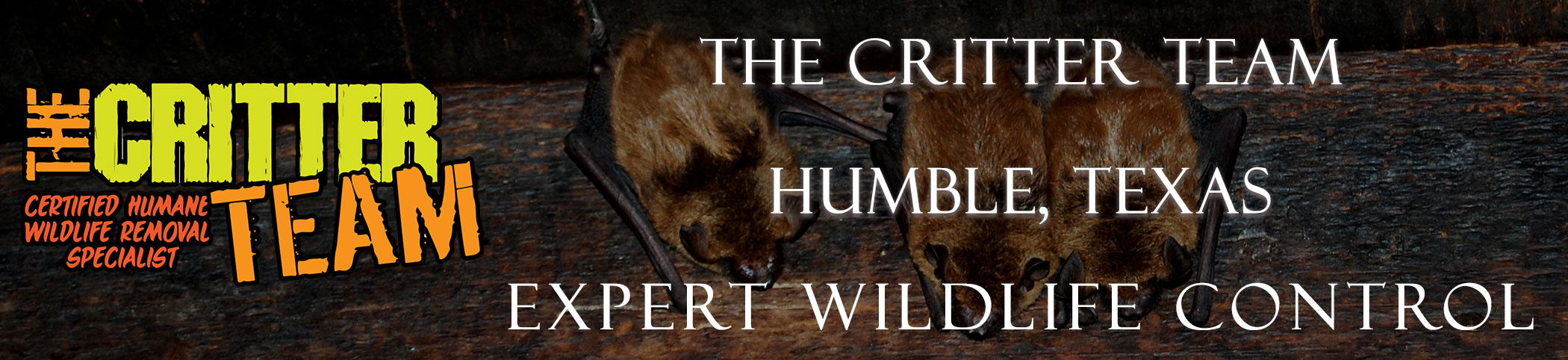 humble_texas_critter_team_headers