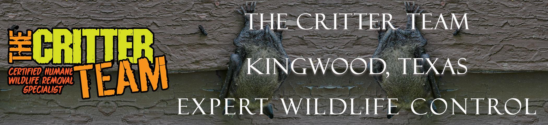kingwood_texas_critter_team_headers