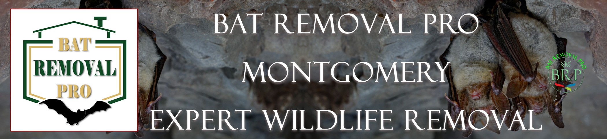 Montgomery_alabama header image