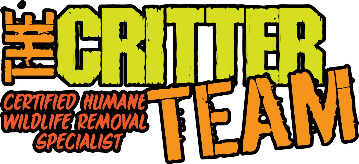 the_critter_team_logo
