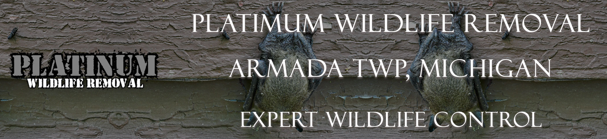 Armada-TWP-Platinum-Wildlife-Removal-michgan