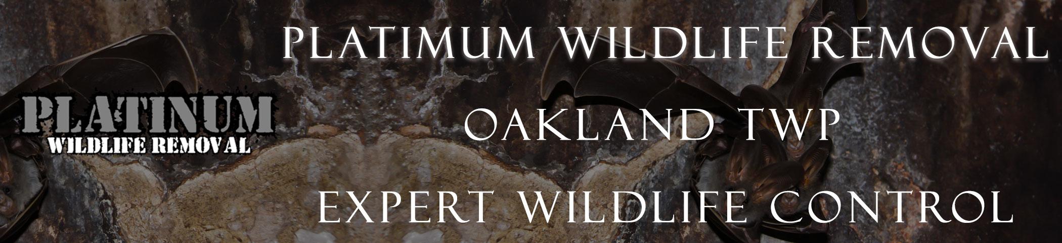 oaklandtwp_michigan header image at bat removal pro