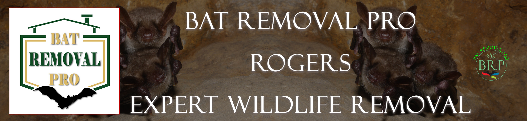 PAGE FOR RENT IMAGE AT BAT REMOVAL PRO