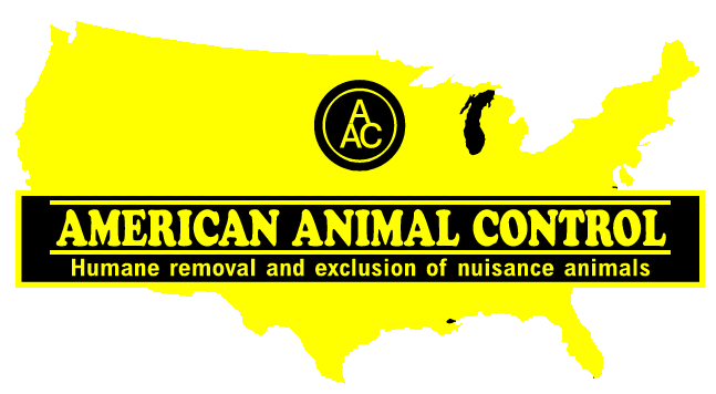 american animal control header image