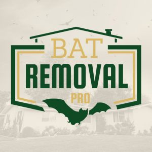 Humane Bat Removal Services