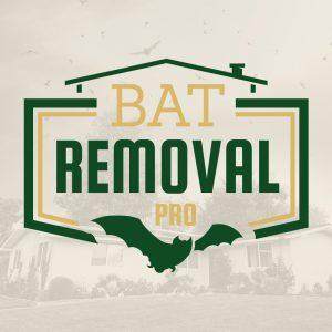 Humane Bat Removal Services