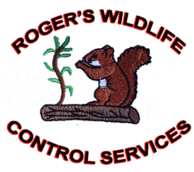 rogers_trans_logo