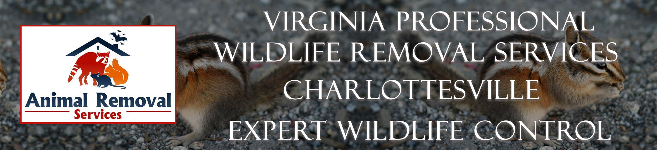 Virginia-Professional-Wildlife-Removal-Services-Charlottesville