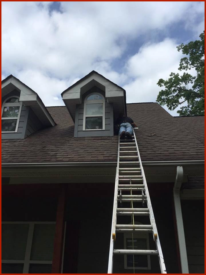Petersburg Virginia Bat Removal Services Sealing A Dormer