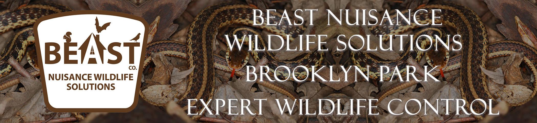 beast_headers_brooklyn_park