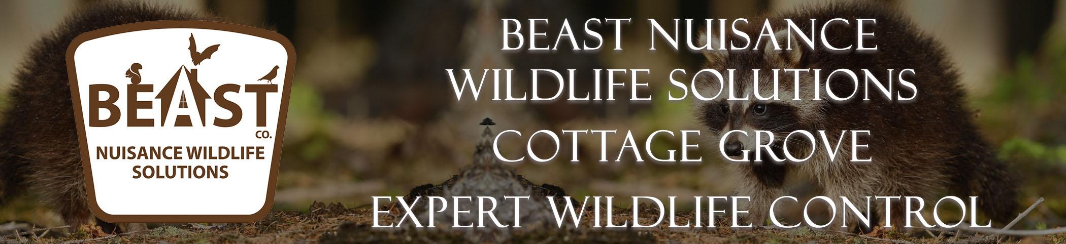 beast_headers_cottage_grove