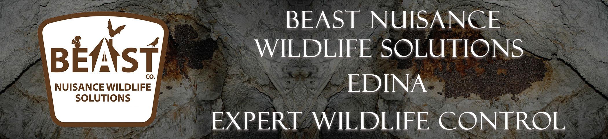 beast_headers_edina