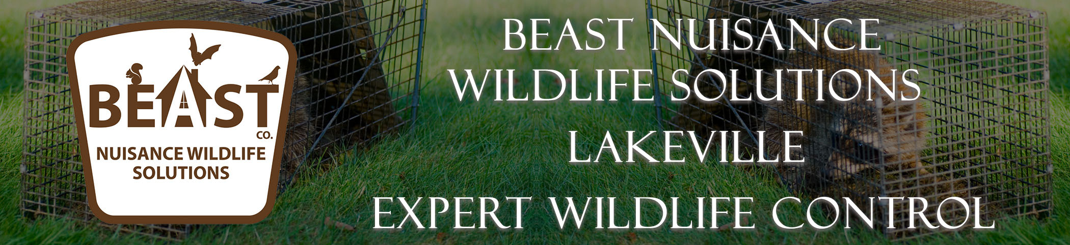 beast_headers_lakeville