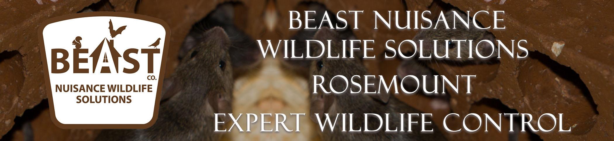 beast_headers_rosemount