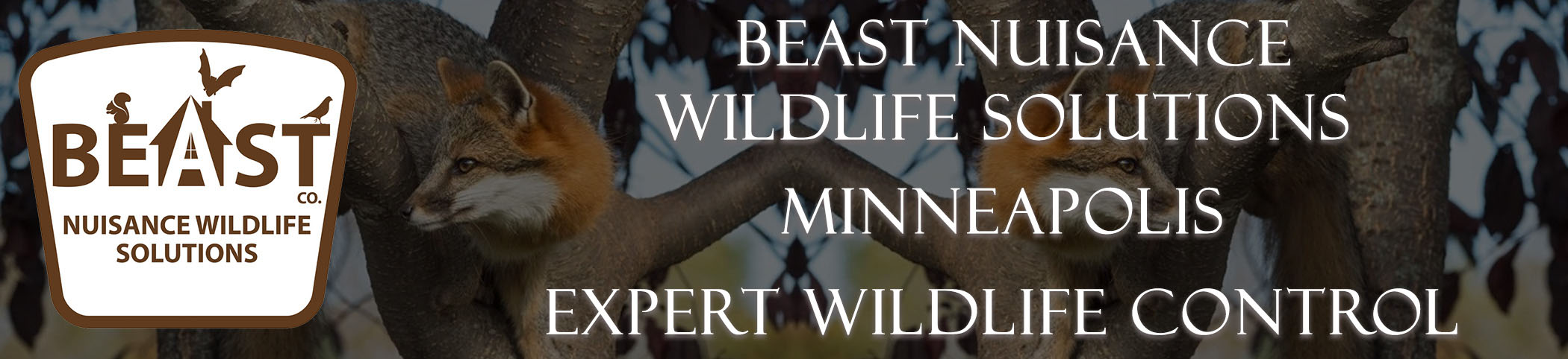 Beast Nuisance Wildlife Solutions
