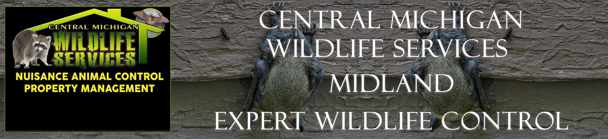 central_michigan_midland_headers