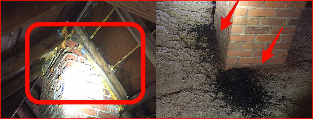 Grosse Pointe Shores Michigan home with poor insulation and bat guano.