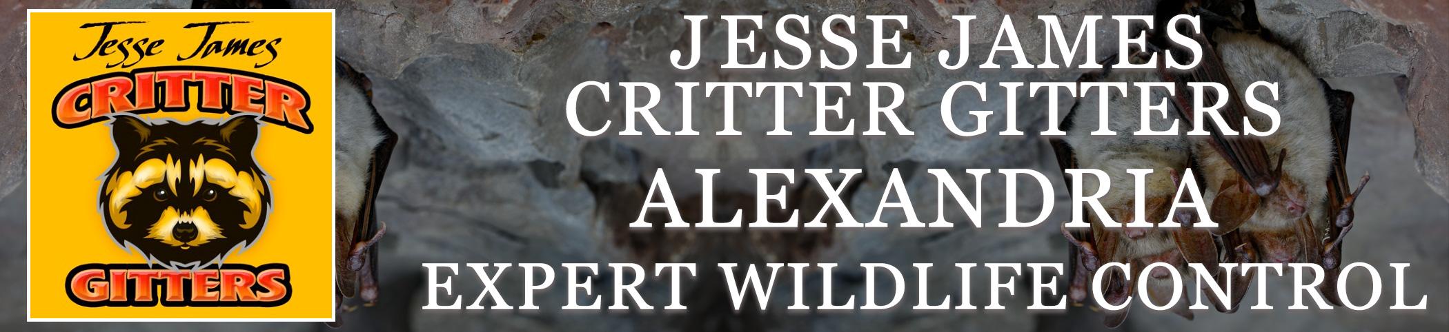 Critter_Gitters_header_ALEXANDRIA_VA
