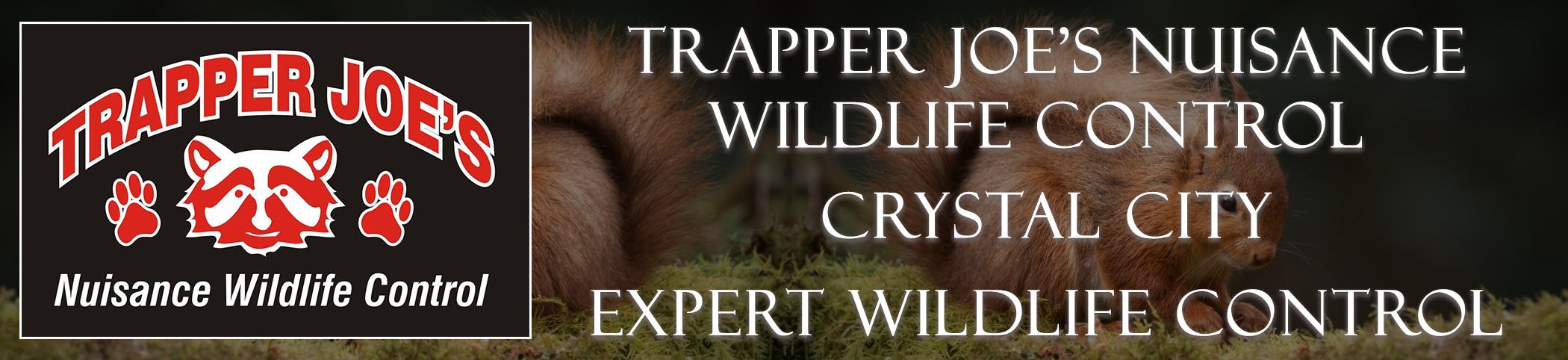 Trapper Joes Crystal City  Missoui header image