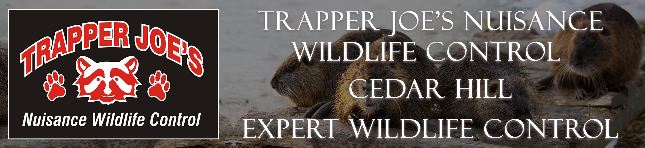 Trapper Joes Cedar Hill Missouri header image