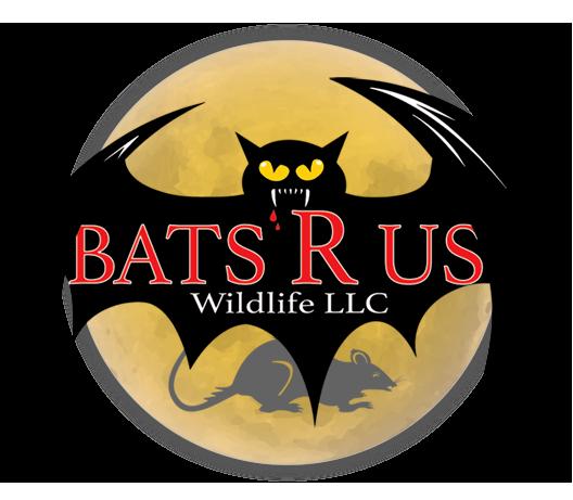 Bats R Us Wildlife LLC Greenwich Connecticut logo