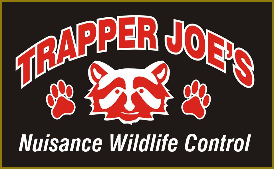 trapper joes stroked logo