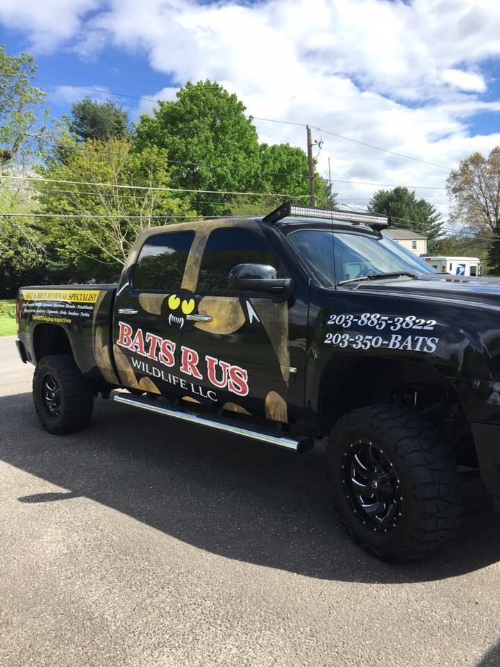 Bats R Us Wildlife LLC  truck with logo