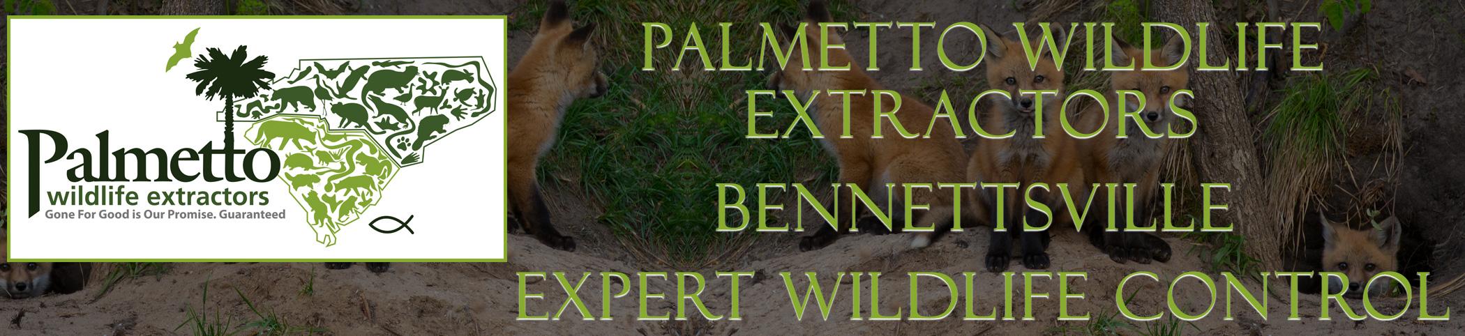 Palmetto Wildlife Extractors Bennettsville south carolina header image
