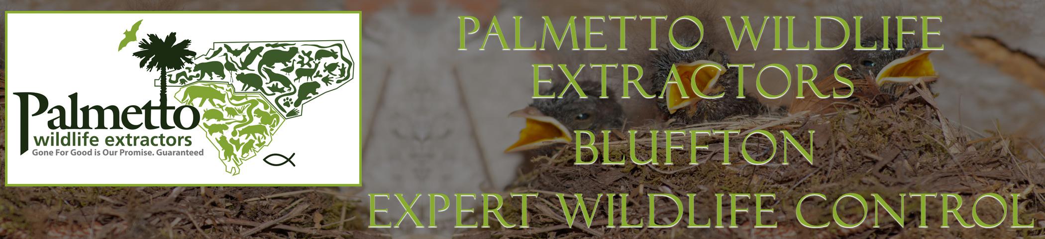 Palmetto Wildlife Extractors Bluffton south carolina header image