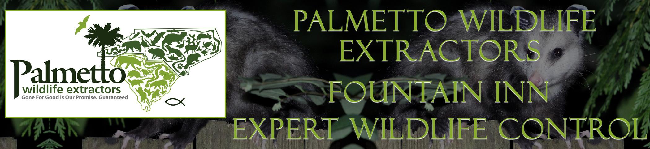 Palmetto Wildlife Extractors Fountain Inn south carolina header image