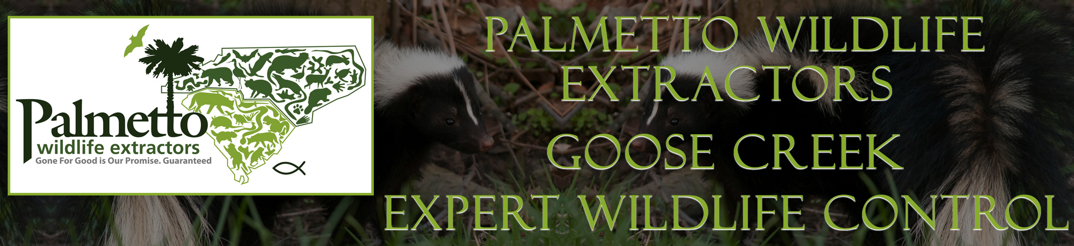 Palmetto Wildlife Extractors Goose Creek south carolina header image