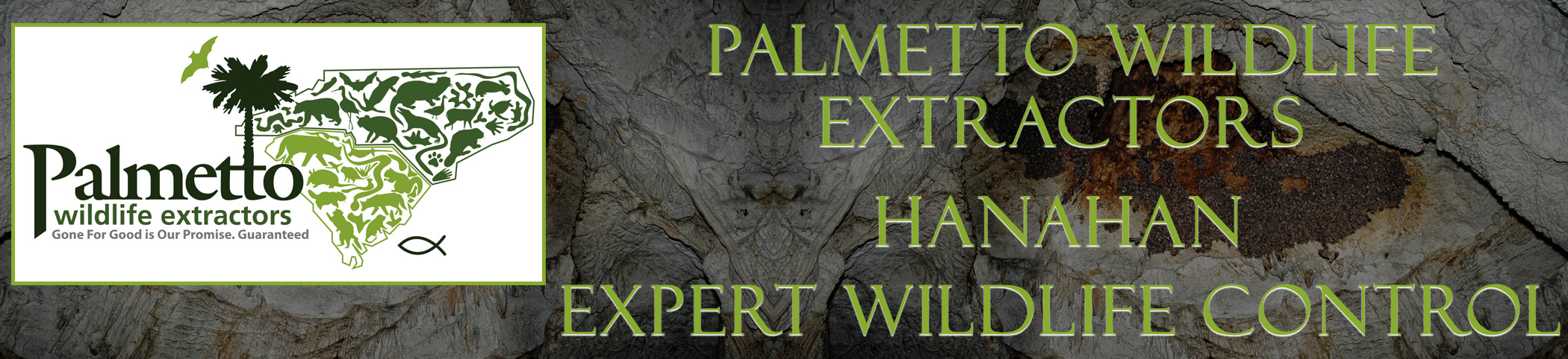 Palmetto Wildlife Extractors Hanahan south carolina header image
