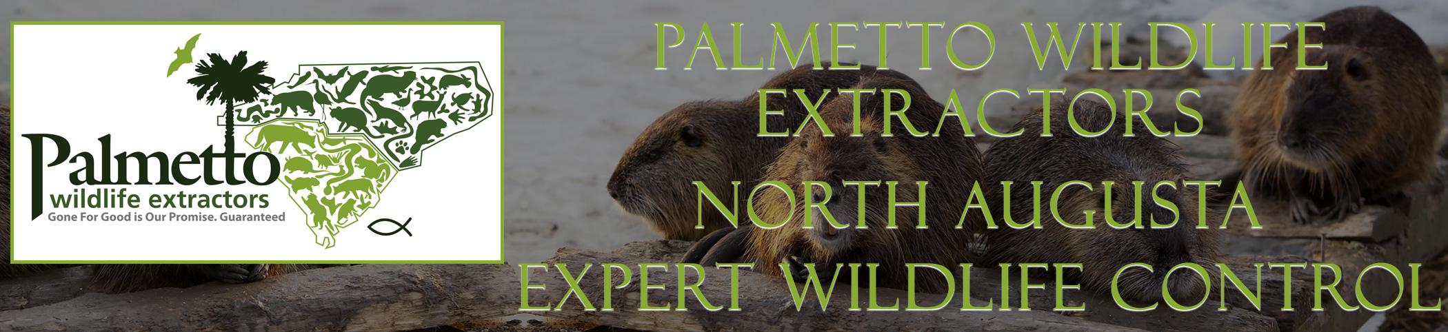 Palmetto Wildlife Extractors North Augusta South Carolina header image