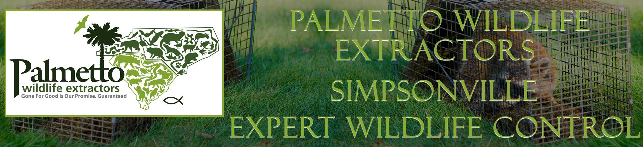 Palmetto Wildlife Extractors Simpsonville South Carolina header image