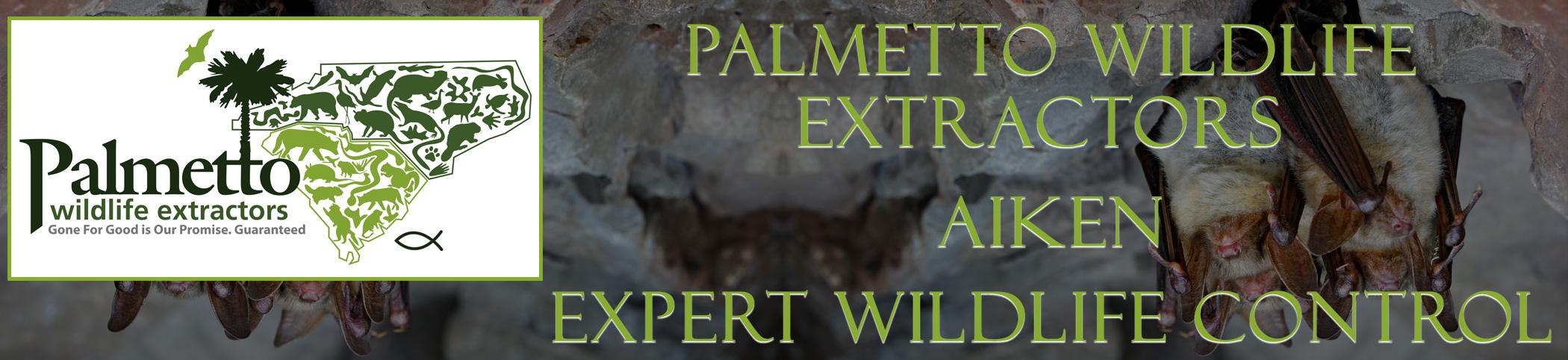 Palmetto Wildlife Extractors aiken south carolina header image