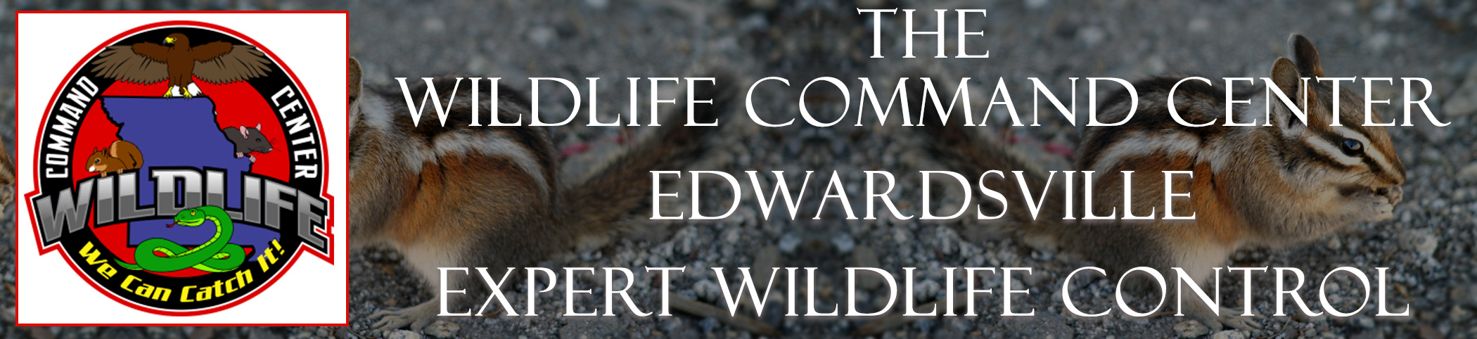 The Wildlife Command Center Edwardsville Missouri Image